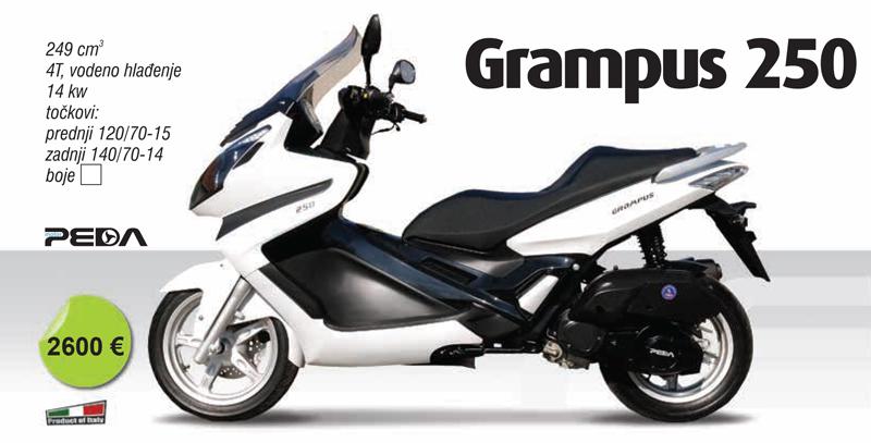 grampus_250